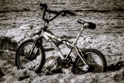 bici scoglio