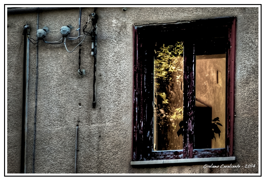 finestra-luce-pianta-Jpeg